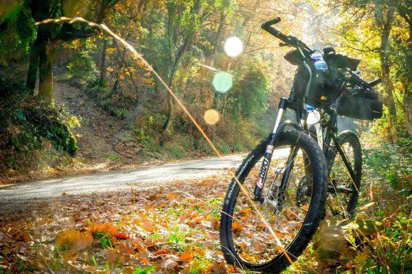 Trasy rowerowe - Góra Chełm